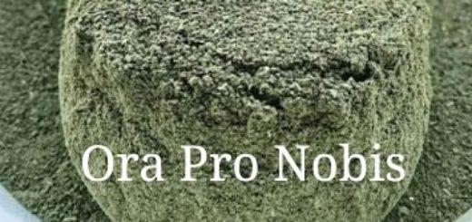 ora-pro-nobis-d